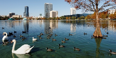 orlando-free-fun-activities-kids-swans-lake-eola-park
